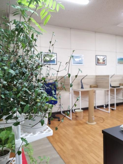 教室の写真5