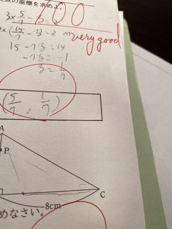 数学の夏休み明けテスト100点